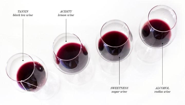 Tasting At Wine Bar Edinburgh